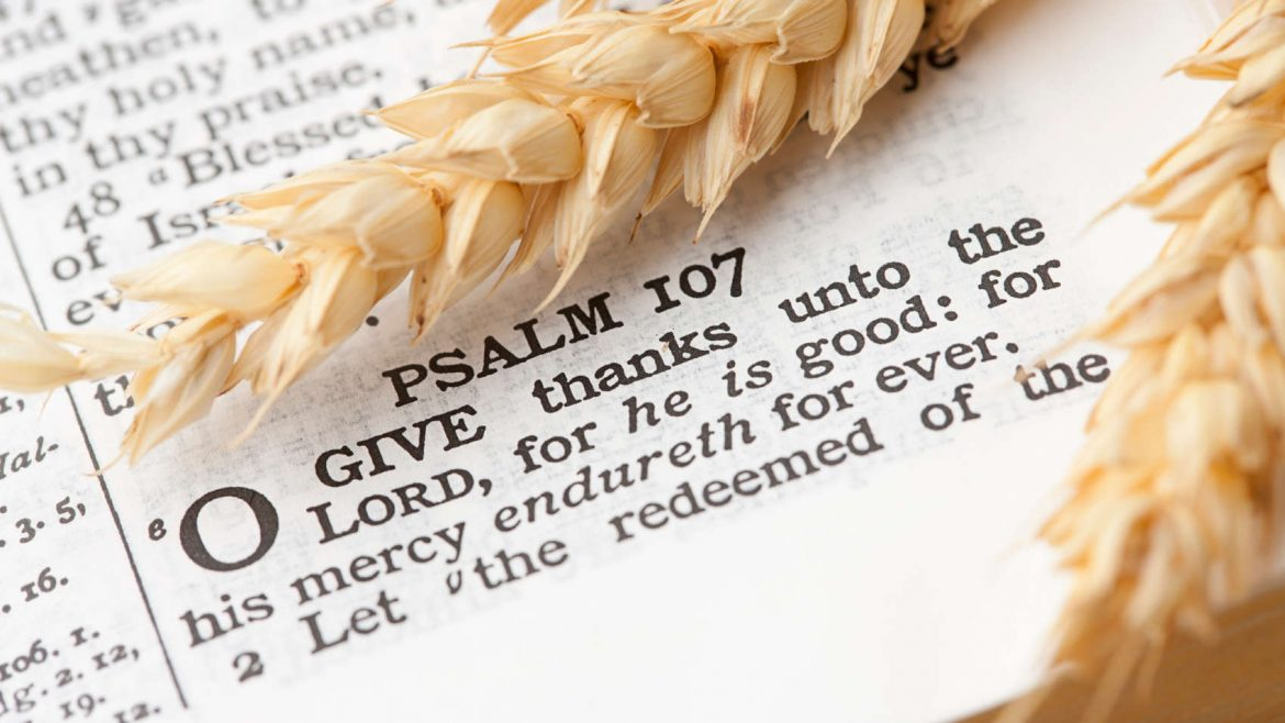 thanksgiving and the Lord
