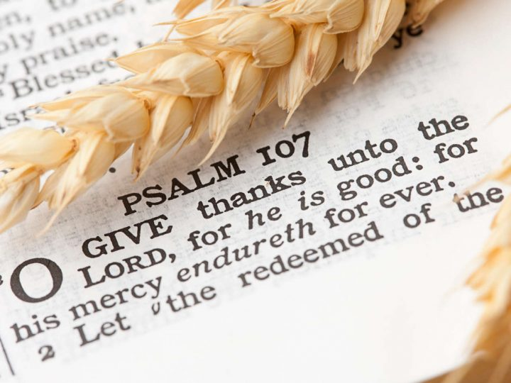 Thanksgiving is cherished by the Lord!